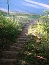 0176 2010.09.05 Winding Stair Gap South Traihead