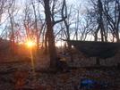 0181 2010.11.20 Sunrise At Wine Spring Campsite by Attila in Hammock camping