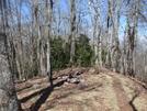 0221 2011.04.02 Small Campsite South Of Sassafras Gap