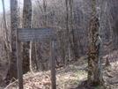 0222 2011.04.02 Trail To Sassafras Gap Shelter