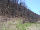 0242 2011.04.03 Overgrown Road Leading To Water At Stecoah Gap by Attila in Trail & Blazes in North Carolina & Tennessee
