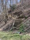 0241 2011.04.03 SOBO Trail From Stecoah Gap