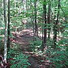 0263 2011.06.24 Walker Gap