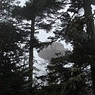 0340 View Of Clingmans Dome From Trail by Attila in Views in North Carolina & Tennessee