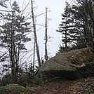 0346 2011.11.26 View North Of Clingmans Dome by Attila in Views in North Carolina & Tennessee