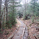 0360 2011.11.26 AT Between SMT and Fork Ridge Trail by Attila in Trail & Blazes in North Carolina & Tennessee