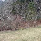 0375 2011.11.26 NOBO Trail At Indian Gap