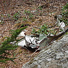 0425 F-4 Wreckage Next To AT From 1984