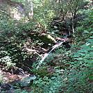 0448 2012.08.26 State Line Branch Cascades