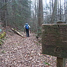 0461 2012.11.23 Sidetrail To Groundhog Creek Shelter by Attila in Trail & Blazes in North Carolina & Tennessee