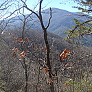 0492 2012.11.25 View Of Bluff Mountain From North Of Garenflo Gap