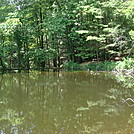 0513  2013.07.13 Pond On Mill Ridge