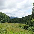0514  2013.07.13 Grassy field at Mill Ridge