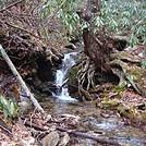 0582 2013.12.28 Oglesby Branch Stream by Attila in Views in North Carolina & Tennessee