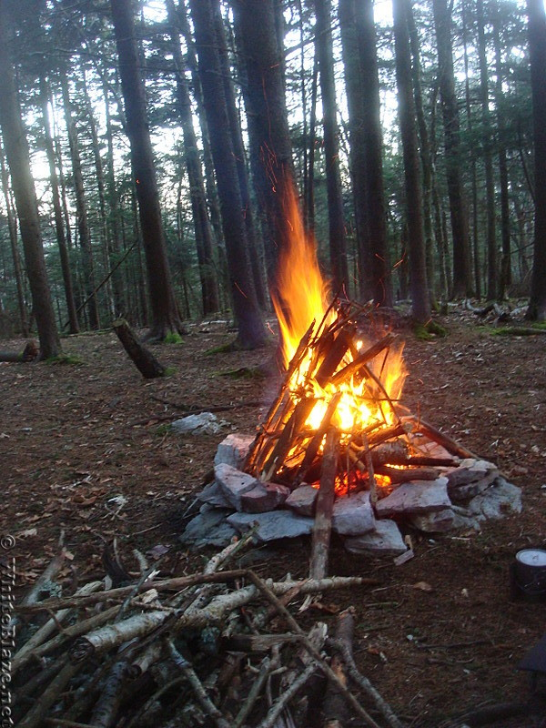 0621 2014.03.08 Campsite North Of Unaka Mountain