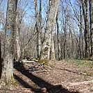 0635 2014.04.26 Campsite North Of Clyde Smith Shelter by Attila in Views in North Carolina & Tennessee