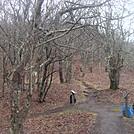 0665 2014.12.29 Yellow Mountain Gap by Attila in Trail & Blazes in North Carolina & Tennessee
