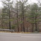0684 2014.12.30 AT SOBO At US 19E Elk Park NC