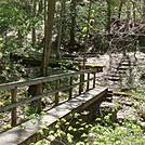0688 2015.05.02 Bridge On Bear Branch