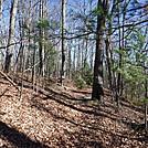 0760 2016.12.23 TN - VA Border by Attila in Trail & Blazes in North Carolina & Tennessee
