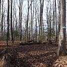 0764 2016.12.23 Campsite And Water North Of TN - VA Border