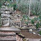 0810 2017.02.27 Footbridge Over Fox Creek by Attila in Trail & Blazes in Virginia & West Virginia
