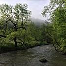0845 2017.05.20 Holston River