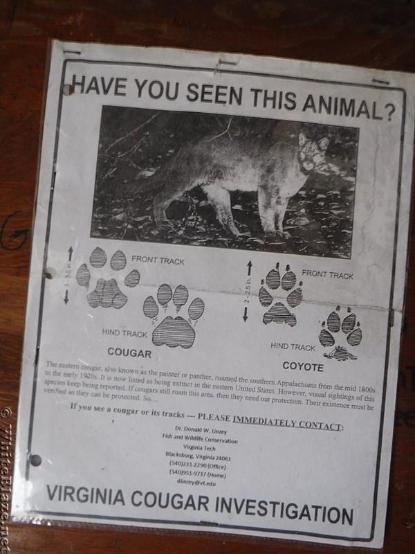 0891 2017.12.30 Doc's Knob Shelter Virginia Cougar Investigation