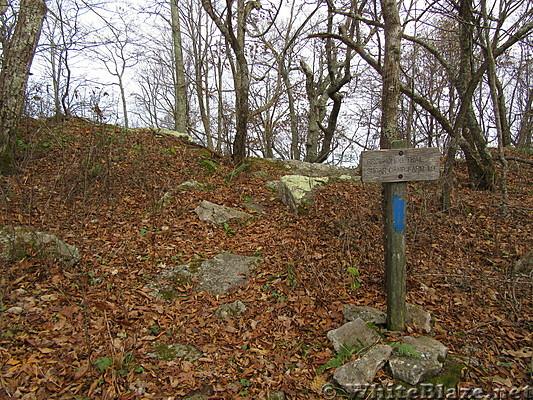 0911 2018.11.07 Blue Blazed Groundhog Trail