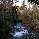 0913 2018.11.07 Pine Swamp Branch