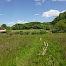 0942 2020.05.31 Sinking Creek Valley AT NOBO to VA 42 by Attila in Trail & Blazes in Virginia & West Virginia