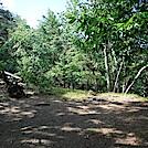 0965 2020.07.19 Campsite North Of Upper Craigs Creek Road VA 621