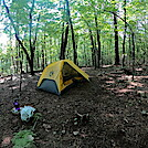0996 2020.09.06 Campsite AT Catawba Mountain Shelter by Attila in Virginia & West Virginia Shelters