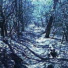 Random hikes by Storm in Members gallery