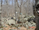 """Beginning Of The """"boulder Field"""" Ri's North-south Trail by Tinker in Other Trails"""