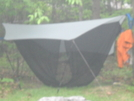 Maccat With Eno Bug Net And Cheapo Hammock by Tinker in Hammock camping