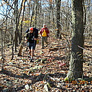 Mariano and Chenango in Pa. by Tinker in Section Hikers
