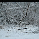 A little surprise - snow by Tinker in Trail & Blazes in Maryland & Pennsylvania