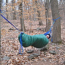 Tinker in hammock Crampton Gap Shelter