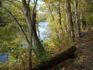 Along A River In The Cumberland Valley Pa.