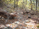 Rocks On Cove Mountain by Tinker in Trail & Blazes in New Jersey & New York