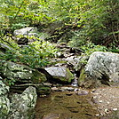 Shenandoah National Park by Boots73 in Section Hikers