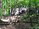 Mt. Tammany Trail