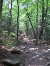 Mt. Tammany Trail by Heavy G in Day Hikers
