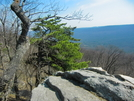 Table Top Rock15 by Heavy G in Day Hikers