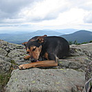 img 0431 by Bhag in Thru - Hikers