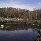 Millbrook pond (NJ)