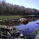 Wawayanda State Park (NJ)