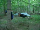 Hammocking In June by bigcranky in Hammock camping
