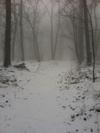 Spring Break Hike by joeyt1291 in Trail & Blazes in Virginia & West Virginia